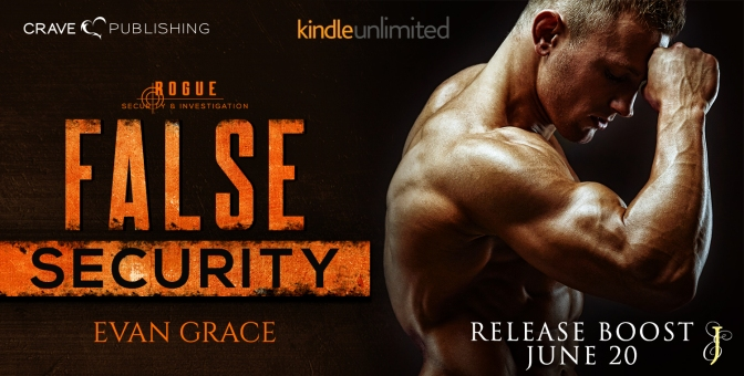 NEW RELEASE!!! ~ False Security by Evan Grace